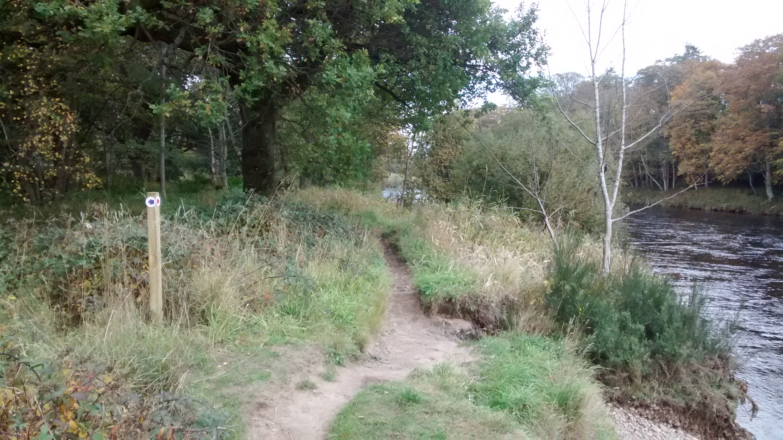 Walk 1 Photo 1