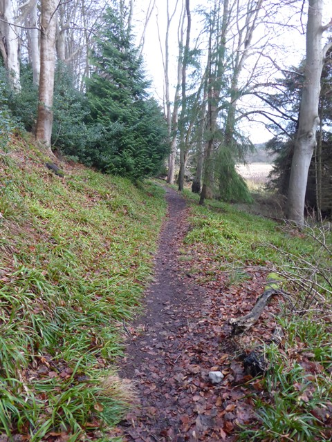 Walk 1 Photo 2